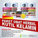 Photo of obat sipilis alami