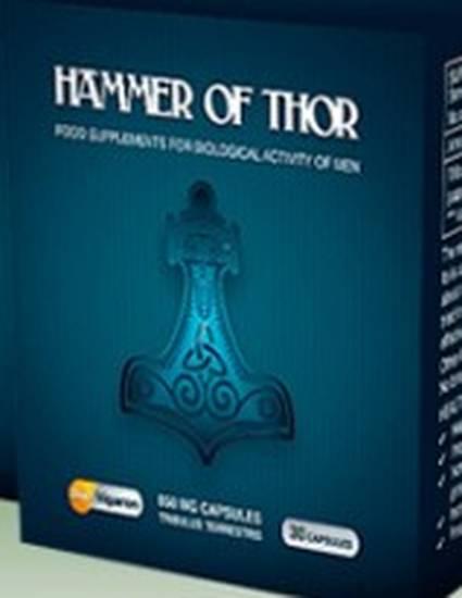 agen jual hammer of thor asli di samarinda 0822 1382 1382 by jual