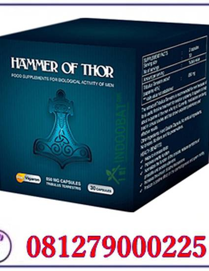 hammer of thor jogja 082135580002 agen hammer of thor asli di kota