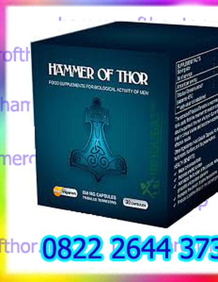 agen hammer of thor di palangkaraya 082226443731 by vinda farma