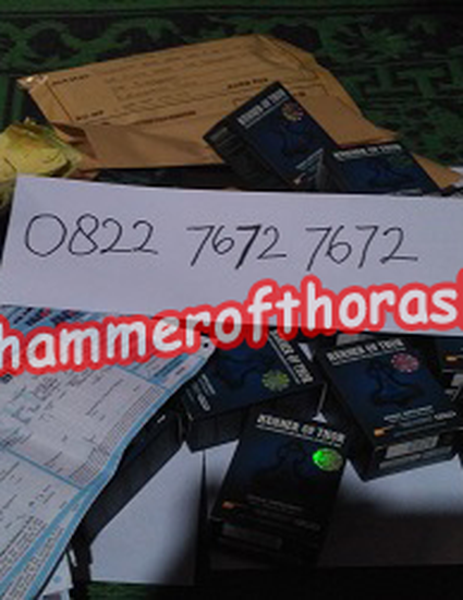 agen hammer of thor di magelang wa 082276727672 jual hammer of